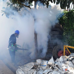 Vecinos piden fumigación en huerto Villa Santa Rosa ante la presencia de zancudos