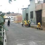 Vecinos de Villa Alejandro se muestran contentos por recojo constante de basura y disminución de delincuencia