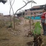 """Implementarán biohuerto gracias al trabajo de la Institución Educativa """"Capullitos"""""""