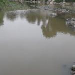 Asentamiento Humano Julio C. Tello podría ser declarado en emergencia debido a plaga de zancudos