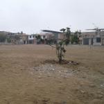 Vecinos del Sector Seis exigen cumplir con Proyecto Mejoramiento Parque Temático