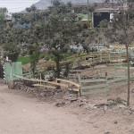 Piden que parque se mantenga verde con el apoyo de municipio y empresas privadas