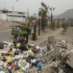"""Villa María del Triunfo: Dirigente denuncia el abandono de riego de palmeras """"Unión""""por parte de Municipio"""