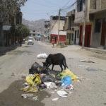 Villa María del Triunfo: Pobladores de AA.HH. de Vallecito preocupados por basura acumulada en el sector