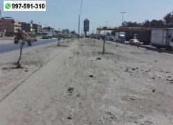 San Juan de Miraflores: Solicitan que alcalde se preocupe por áreas verdes de la Panamericana Sur