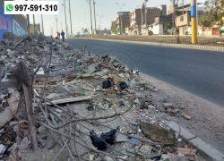Villa El Salvador: Vecinos denuncian presencia de basura y desmonte en alrededores del tren eléctrico